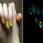 Светящиеся в темноте лаки для ногтей